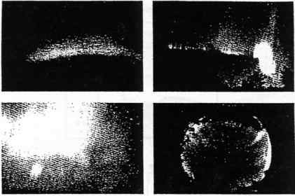 Fig.3a - Forms of aurorae: Arc - Rayed band, Patch - Corona of rays.