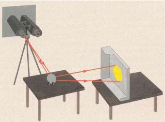 Figure 2 - Projecting the Sun's image through binoculars.